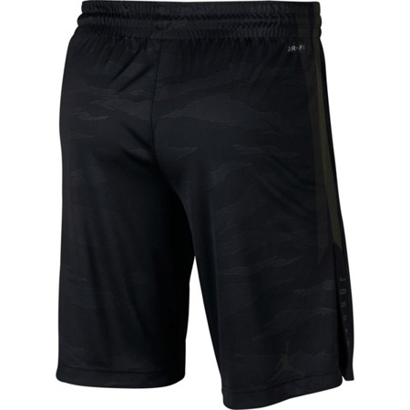 Jordan 23 Alpha Dry Knit Shorts | AO8857-010